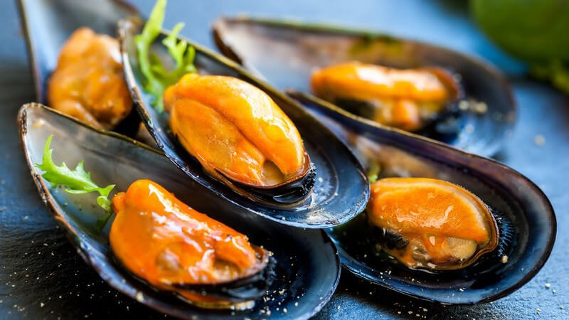 Frisch gekochte Muscheln