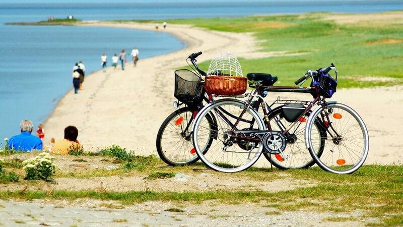 Von Amrum bis Wangerooge - Deutsche Nordseeinseln im Überblick