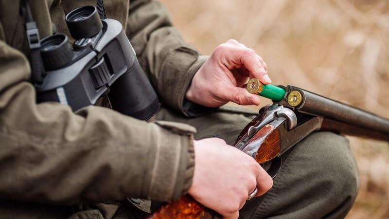 Von Büchsen und Flinten über Revolver und Pistolen bis hin zu Jagdmessern, Bärenspießen und Saufedern - Für die Jagd stehen verschiedene Waffen zur Verfügung