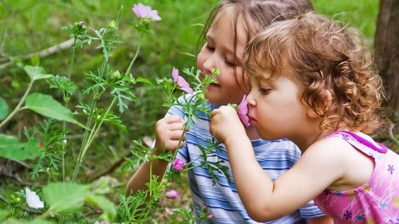Der Garten lässt sich auch für Kinder interessant gestalten - wer zudem einige Sicherheitsaspekte beachtet, kann für seinen Nachwuchs ein wahres Spielparadies gestalten