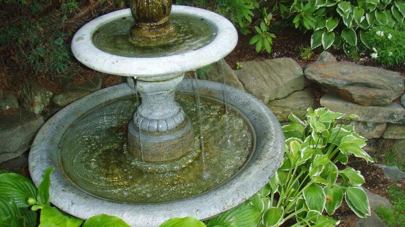 Mit Wasserelementen im Garten, z.B. in Form eines Miniteichs, kann man stilvolle Akzente setzen - als Wasserdusche oder Schwimmteich ist es zudem sehr nützlich
