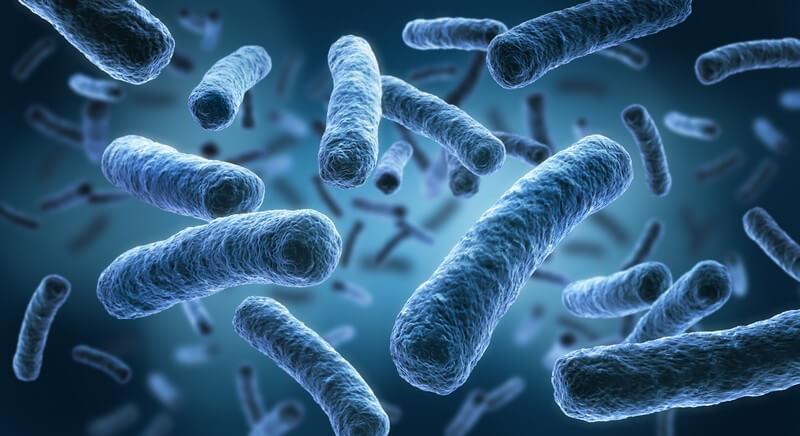 Menschen mit Lungenemphysemen oder chronischer Bronchitis sind besonders gefährdet