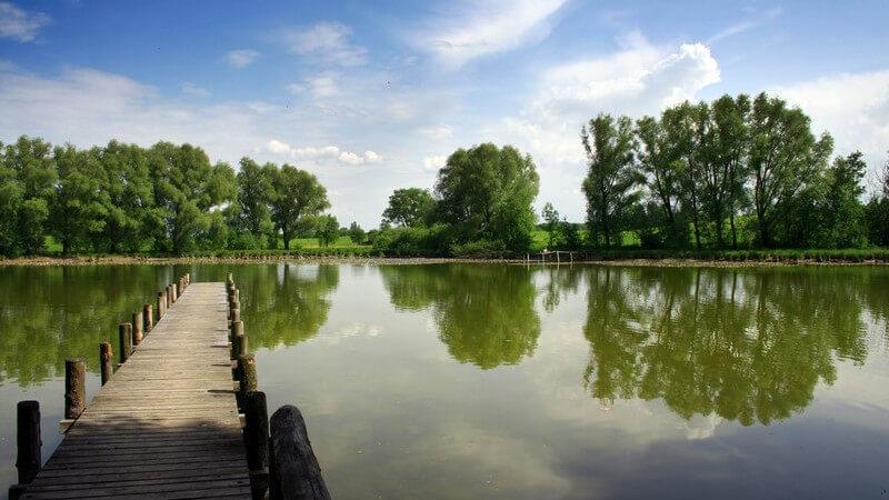 Ein Überblick der unterschiedlichen Seenarten