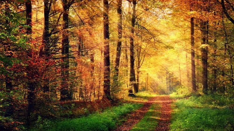 Eine Wanderung ohne Störfaktoren von Sonnenauf- bis Sonnenuntergang
