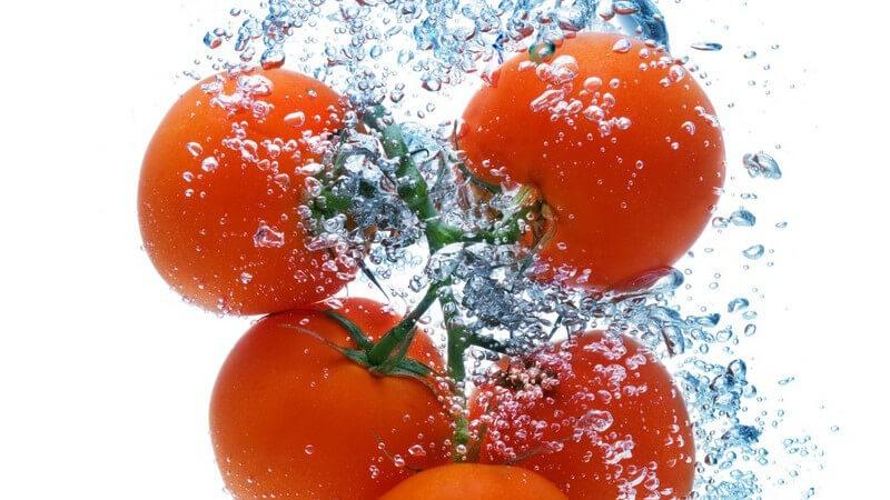 Für die Zubereitung von Tomatenmark sollten überreife Tomaten gewählt werden; diese erhält man am einfachsten aus dem eigenen Garten