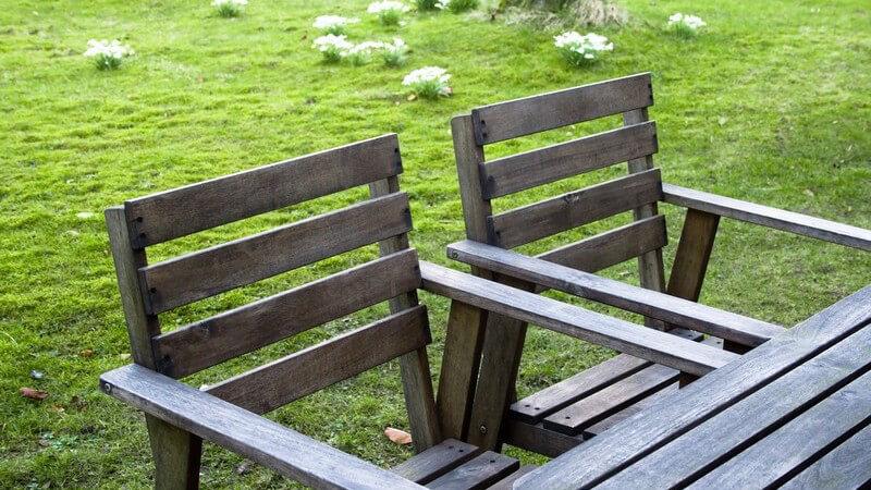 Die klassische Sitzgelegenheit: Merkmale und Vielfalt von Stühlen