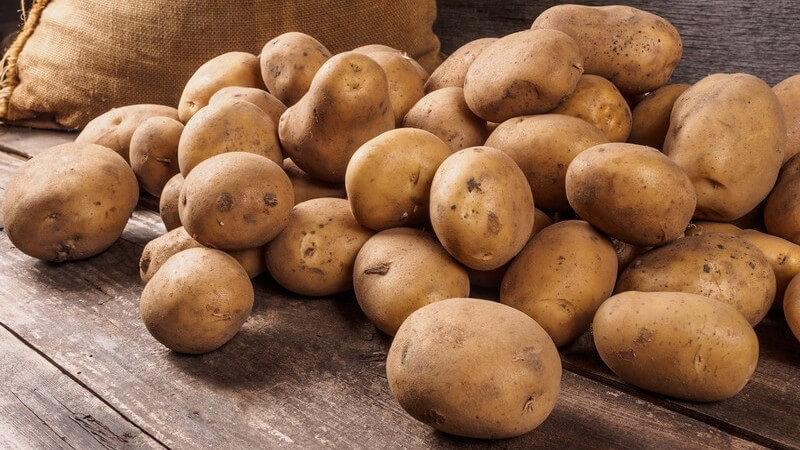 Damit Kartoffeln möglichst lange frisch bleiben, kommt es auf die richtige Lagerung an