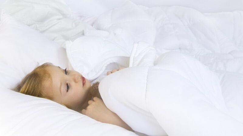 Besondere Bettdecken aus Hanf, Kamelflaumhaar, Lyocell/Tencel oder Schafschurwolle