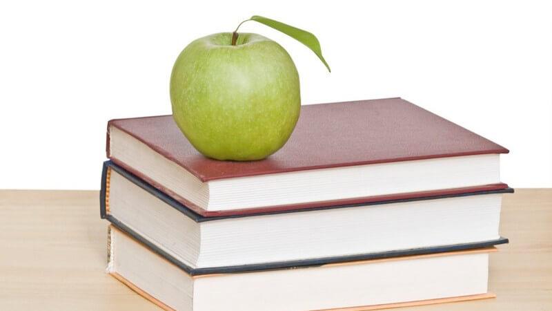 Epik, Lyrik, Dramatik - wir geben einen Überlick über die Großgattungen der Literatur: Entwicklung, Merkmale und Formen