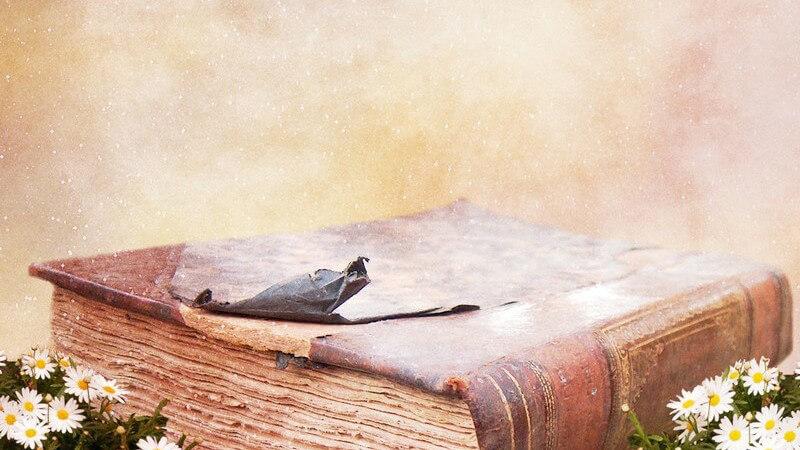 Die Einteilung der Bücher erfolgt u.a. nach deren Inhalt - es gibt sowohl Sachbücher als auch die Belletristik, denen man diverse Büher zuordnen kann