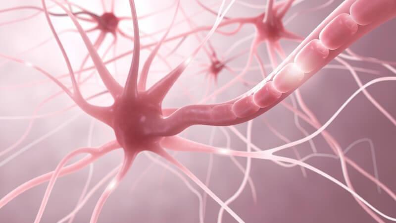 Wissenswertes zum Wirkungsprinzip und Ablauf der Biofeedback-Therapie