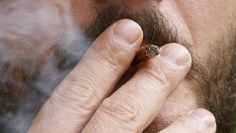 Entstehung der nikotinsucht