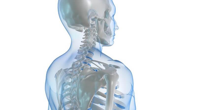 Das funktionskieferorthopädische Gerät soll für einen funktionalen Kiefer und eine umfassend verbesserte Lebensqualität sorgen