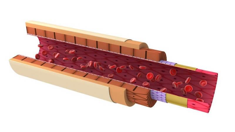 Indikationen, Ablauf und mögliche Risiken einer Bestimmung der Entzündungsmarker