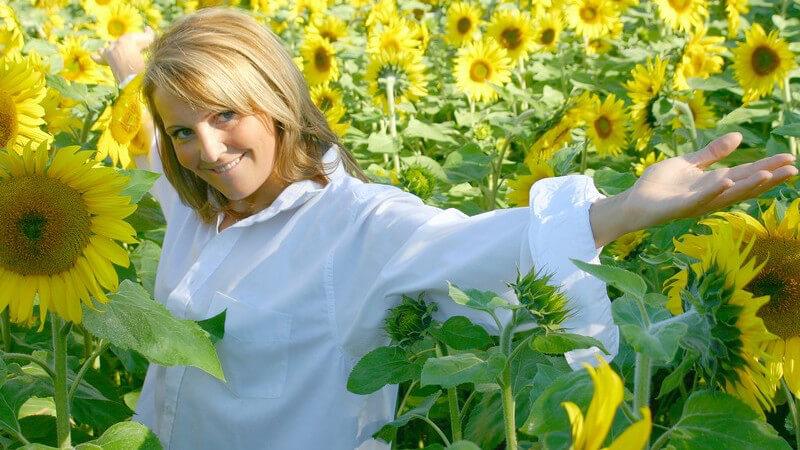 Merkmale, Anwendung und positive Wirkung der Sonnenblume als Heilpflanze