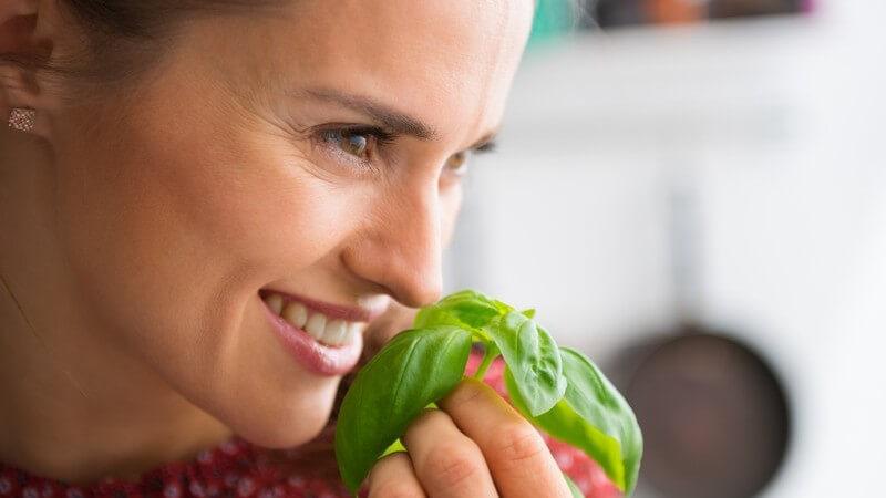 Nicht alle Küchenkräuter und Heilpflanzen können in der Schwangerschaft bedenkenlos genutzt werden