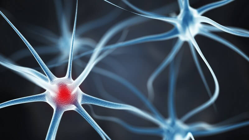Komplikation der Lyme-Borrelliose, bei der die Borrelien das Nervensystem befallen