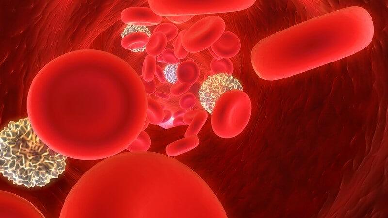 Ansteckung, Symptome und Verlauf der Ringelröteln beim erwachsenen Menschen