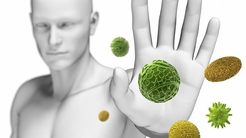 Nahrungsmittel für ein starkes Immunsystem