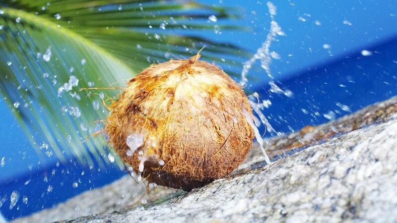 Das Palm- und Palmkernöl kann stark erhitzt werden