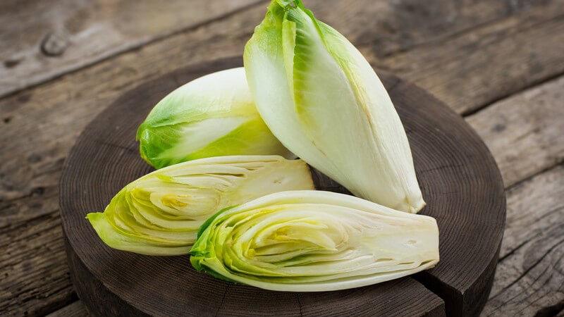 Der Chicorée benötigt für sein Wachstum viel Sonne; er ist sehr kalorienarm und kann kalt als gemischter Salat oder auch warm als Beilage serviert werden