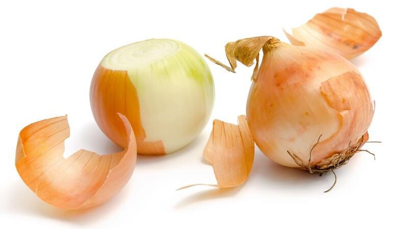Küchenzwiebeln lassen sich sowohl roh, als auch gebraten oder gekocht essen - als Heilmittel hilft sie z.B. bei Ohrenschmerzen