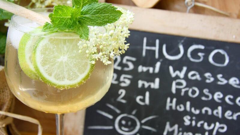 Limetten werden besonders gerne für Cocktails verwendet