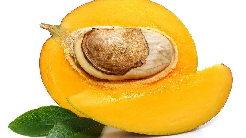Die Mango ist eine sehr beliebte exotische Frucht bei uns und man kann sie in fast jedem Supermarkt kaufen