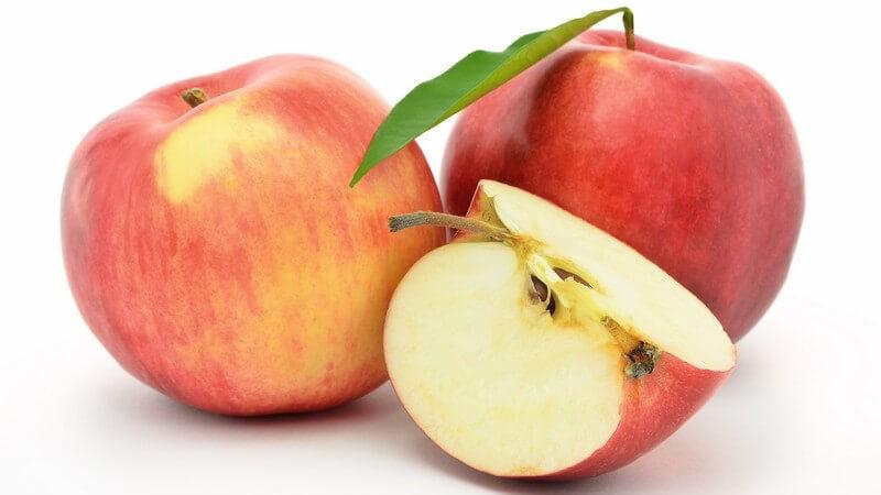 Jonagold-Äpfel sind aufgrund ihrer Vielseitigkeit sehr beliebt