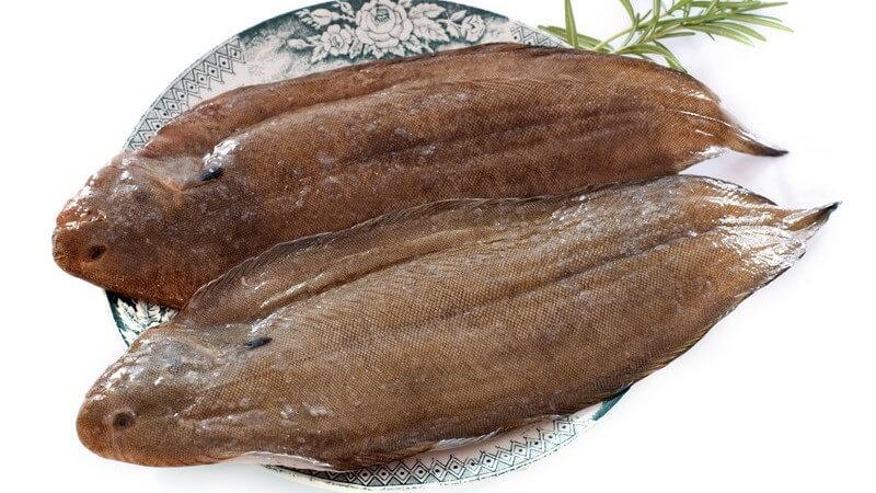 Dieser Fisch wird in der Regel gedünstet oder gebraten