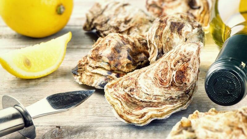 Wissenswertes über Austern