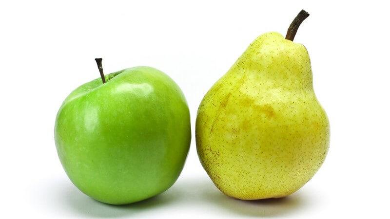 Die Hochsaison der Produktion liegt im September, wenn Birnen und Äpfel reif sind