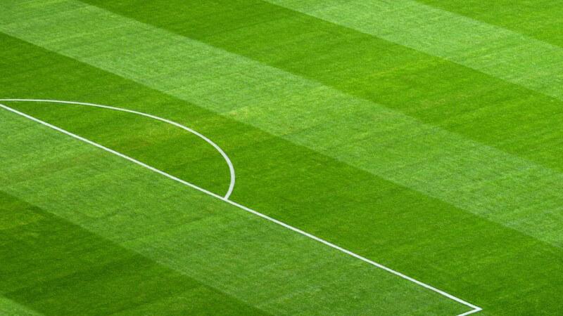 Wer die Fußball-EM in Polen und der Ukraine verfolgen möchte, sollte sich Tickets für diese Stadien besorgen
