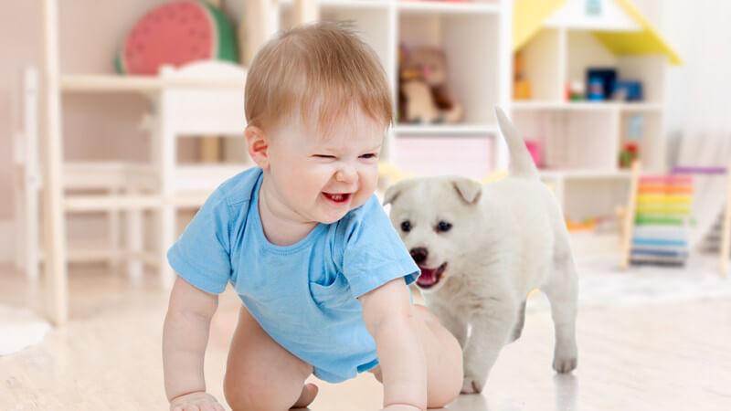 Altersgerechtes Kinderspielzeug bis zu einem Alter von zwölf Monaten