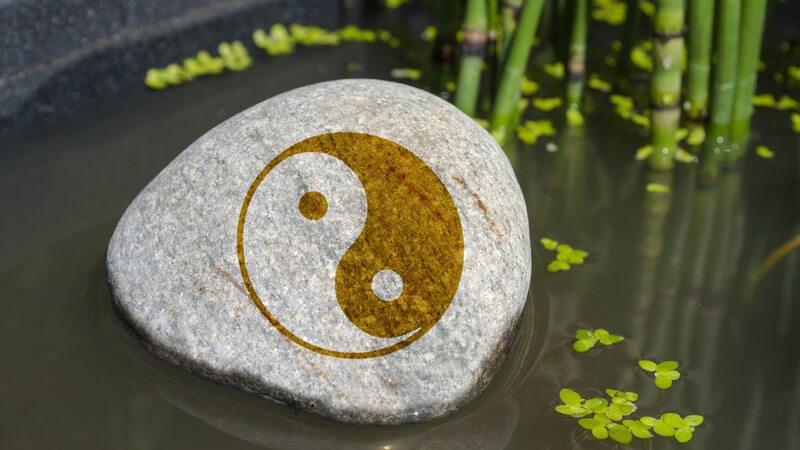 Merkmale von zu viel Yin und Yang