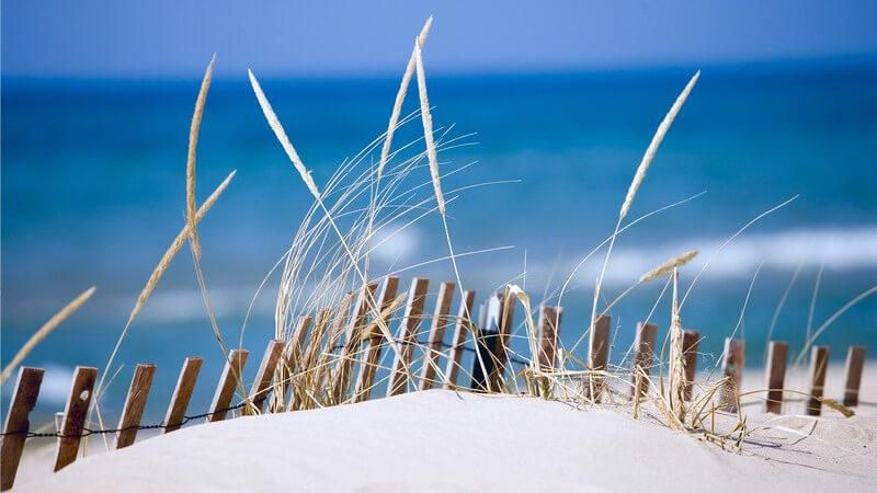Wissenswertes zum Seewind und Föhnwind
