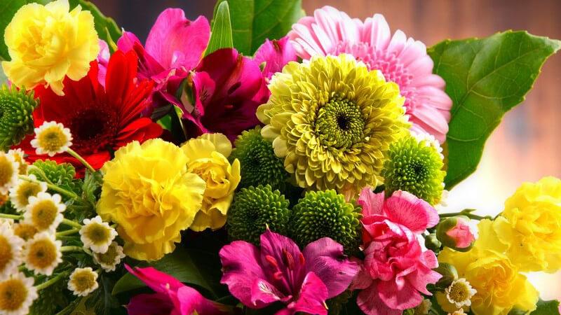 Der runde Blumenstrauß zählt zu den klassischen Sträußen - die Blumenstiele werden bei dieser Form in der Regel gekürzt