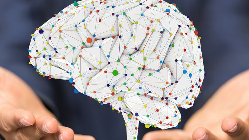 Gehirntraining mit Stimulierung aller fünf Sinne und Anregung der Gedächtniszellen