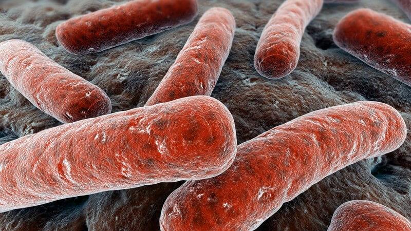 Die Entstehung von Diphtherie und wie man sie behandeln und erkennen kann