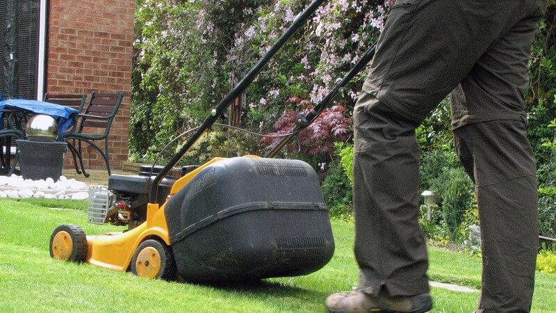 Wer einen Garten hat, für den wird in der Regel auch das Rasenmähen zum Thema - Wir geben Informationen zu der richtigen Schnitthöhe und den unterschiedlichen Rasenmähern