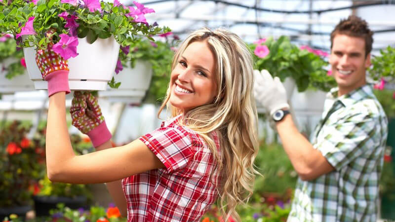 In einem Gewächshaus lassen sich im eigenen Garten verschiedenste Pflanzen ziehen - wir geben Informationen, Tipps und Hinweise rund um die Nutzung
