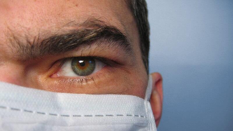 Wissenswertes zum Schweinegrippen-Virus - panische Reaktionen sind bei aktuellem Stand unangebracht