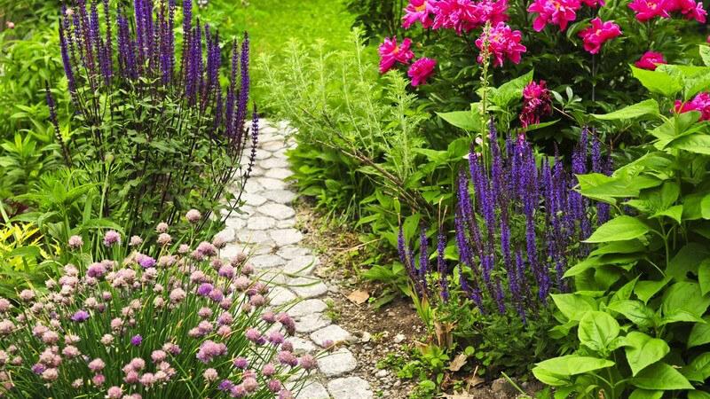 Auch aus dem kleinsten Vorgarten kann man mit den richtigen Gestaltungsideen Einiges rausholen - wir geben Tipps und zeigen, worauf es ankommt