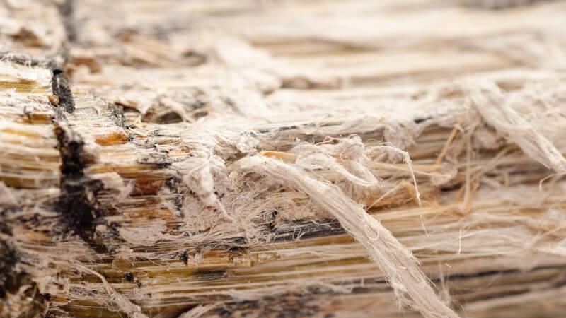 Die Entstehung einer Asbestose und wie man sie erkennen und behandeln kann