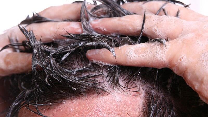 Das richtige Shampoo bei brüchigem Haar, spezielle Shampoos für coloriertes Haar und schonendes Shampoo bei Haarausfall