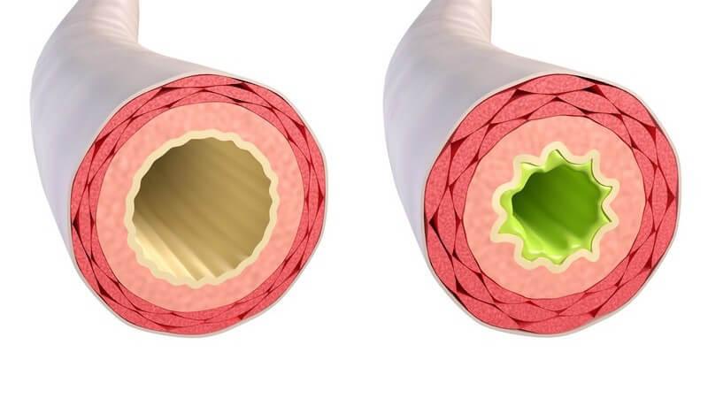 Anwendung und Ablauf des Atemtests