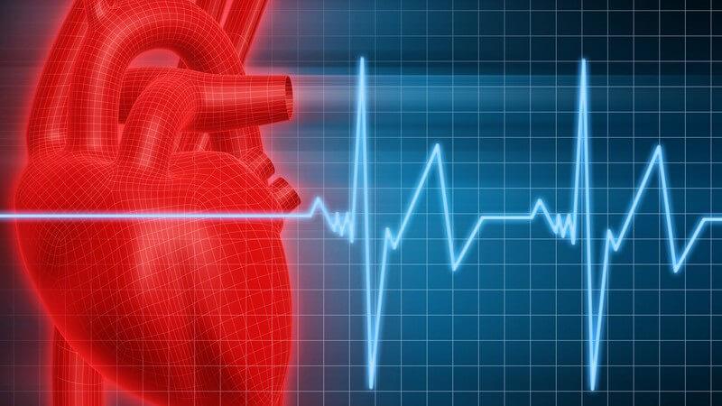 Funktion, Durchführung und mögliche Risiken vom Belastungs-EKG zur Erkennung von Erkrankungen und der Fitness