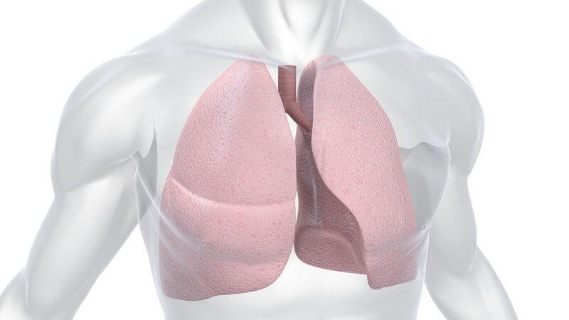 Wissenswertes zur Spirographie zur Überprüfung der Lungenfunktion