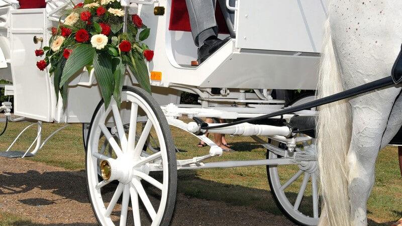 Warum eine Hochzeitskutsche nicht immer von Vorteil ist - Was gilt es beim Mieten einer Kutsche für die eigene Hochzeit zu beachten?