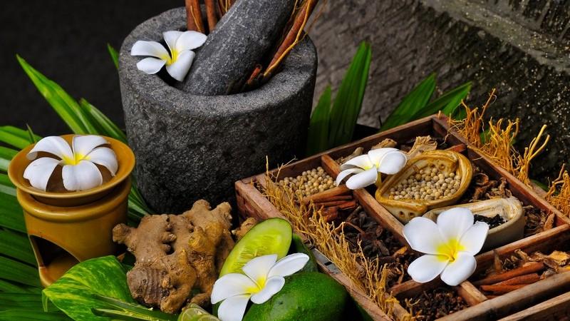 Formen der Verwendung von Heilpflanzen und mögliche Nebenwirkungen einer Phytotherapie